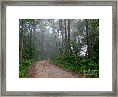 Dirt Path In Forest Woods With Mist Framed Print by Olivier Le Queinec