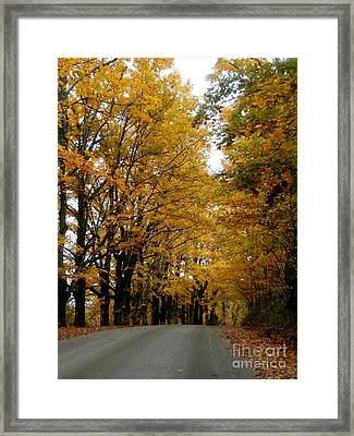 Dirt Road Colors Framed Print by Steven Valkenberg