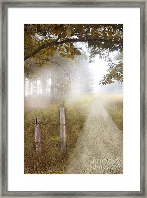 Dirt Road In Fog Framed Print by Jill Battaglia