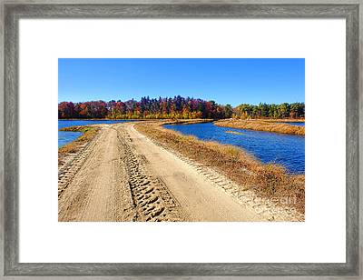 Dirt Road In Marsh Framed Print by Olivier Le Queinec
