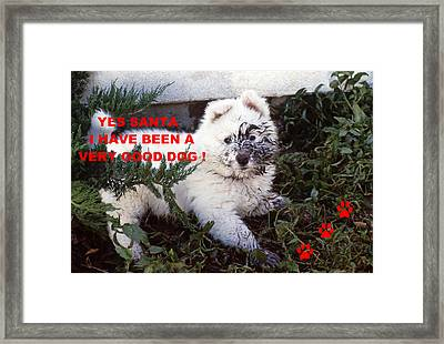 Dirty Dog Christmas Card Framed Print