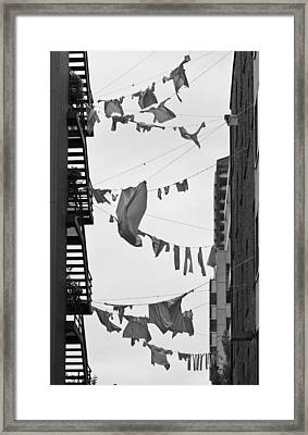 Dirty Laundry Framed Print