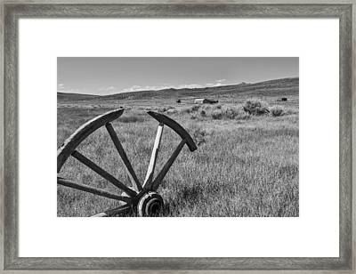 Discarded Framed Print by Jon Glaser