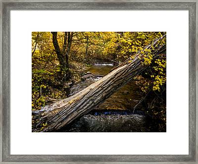 Discover Our Strengths Framed Print