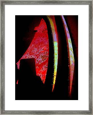 Discover Framed Print by Shirley Sirois