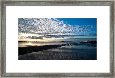 Discovery Park Evening Framed Print by Mike Reid