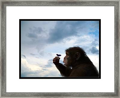 Discovery... Framed Print