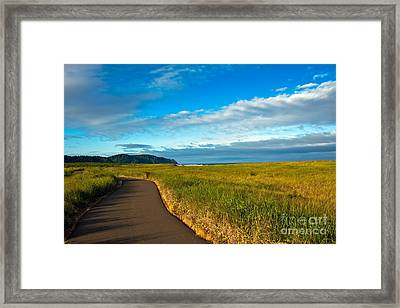 Discovery Trail Framed Print by Robert Bales