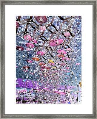 Discs 2 Framed Print by Dietrich ralph  Katz
