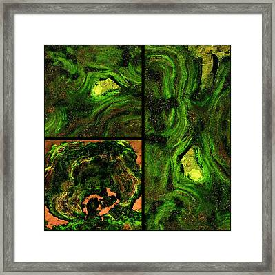 Disengage Framed Print by Tom Druin