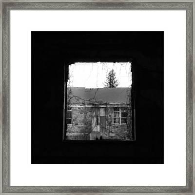 Dismal Life Framed Print