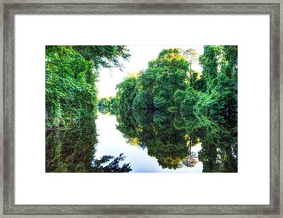 Dismal Swamp Canal Framed Print by David Cote