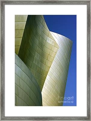 Disney Concert Hall 5 Framed Print by Micah May