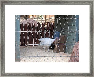 Disneyland Park Anaheim - 121226 Framed Print by DC Photographer