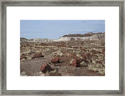 Dispersed Framed Print by Kenneth Hadlock