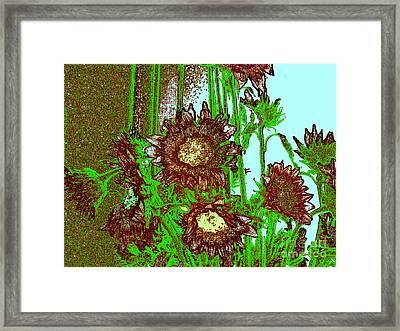 Display Of Sunflowers Framed Print
