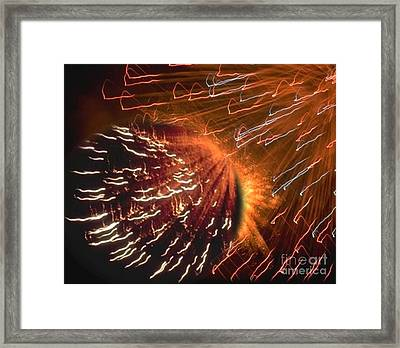Display Of Wonders Framed Print by Belinda Threeths