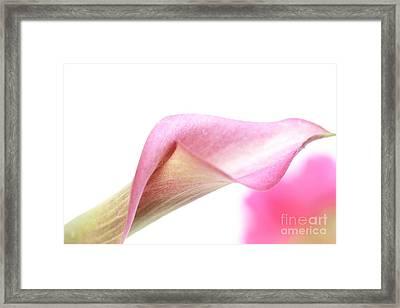 Dissolve  Framed Print