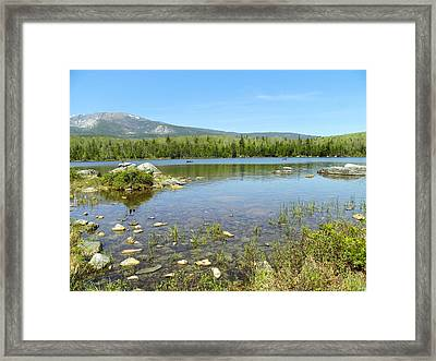 Framed Print featuring the photograph Distant Moose by Gene Cyr
