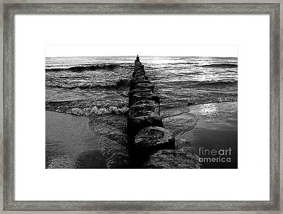 Distant Seagull Baltic Beach Framed Print by Andy Prendy