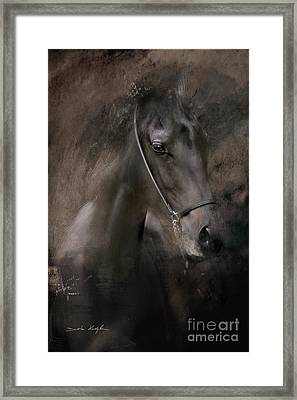 Distinguished Framed Print by Dorota Kudyba