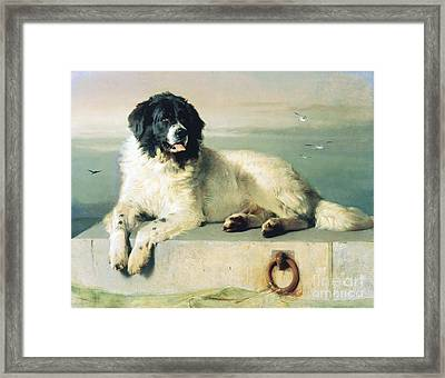 Distinguished Member Of The Humane Society Framed Print by Pg Reproductions