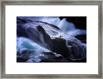 Framed Print featuring the photograph Distractions by Philippe Sainte-Laudy