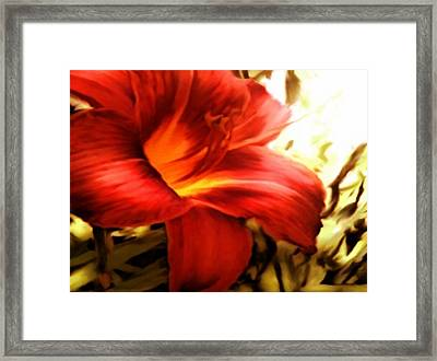 Ditch Flowers Framed Print
