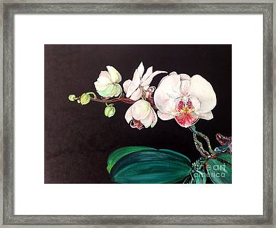 Framed Print featuring the painting Diva by Iya Carson