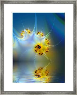Dive Framed Print by Sharon Lisa Clarke