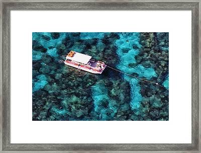 Dive Trip Framed Print by Patrick M Lynch