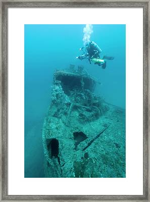 Diver At 'northern Light' Shipwreck Framed Print by Noaa