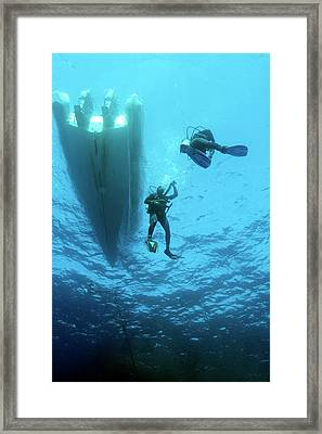 Divers Descending From A Boat Framed Print by Louise Murray