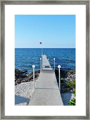 Framed Print featuring the photograph Divers Down by Amar Sheow
