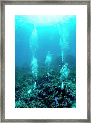 Divers Over A Coral Reef Framed Print