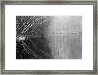 Divided By Nature Bw Framed Print by Karol Livote