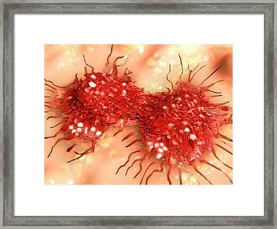 Dividing Cancer Cell Framed Print by Juan Gaertner