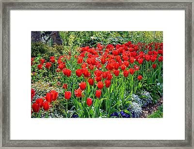 Divine Garden...... Framed Print by Tanya Tanski