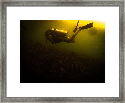 Diving Dark Framed Print