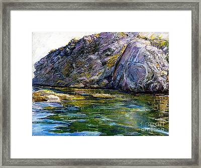 Diving Off Of Lion's Head Catalina Framed Print by Randy Sprout