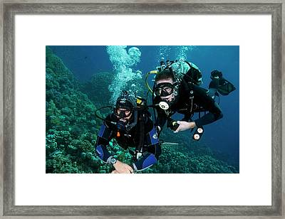 Diving Student And Instructor Framed Print by Louise Murray