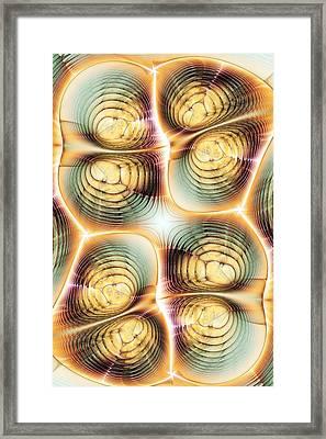 Division Framed Print by Anastasiya Malakhova