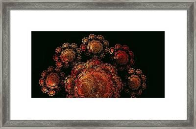 Diwali Festival Of Lights Framed Print by Doug Morgan