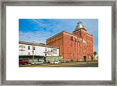 Dixie Beer Framed Print by Steve Harrington