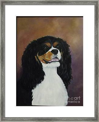 Dixie Belle Framed Print by M J Venrick