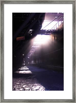Dmir Framed Print