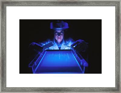 Dna Fragmentation Framed Print by Science Source