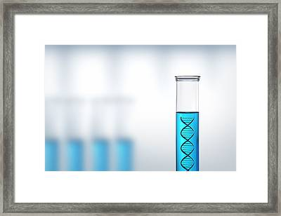 Dna Research Or Testing In A Laboratory Framed Print by Johan Swanepoel