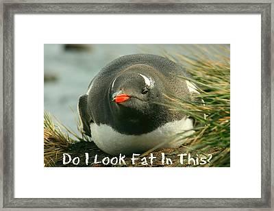 Do I Look Fat Framed Print