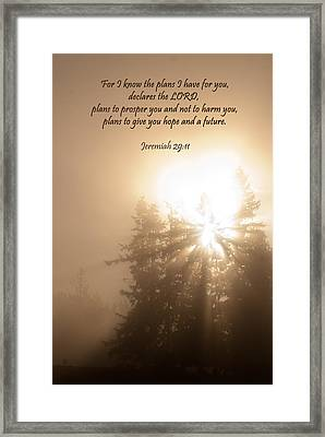Do Not Be Afraid Framed Print by Jani Freimann